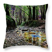 Colors On The Creek Throw Pillow