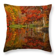 Colors Reflect Throw Pillow
