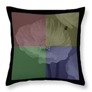 Colour Block Poppy Triptych Throw Pillow