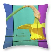 Colour Blocking Spring Throw Pillow