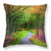 Colour Mysteries Throw Pillow