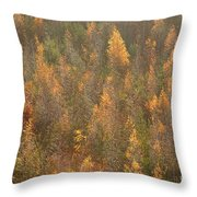 Colourful Autumn Leaves. Throw Pillow