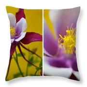 Colourful Colombine Throw Pillow