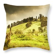 Colourful Fields And Farmyards Throw Pillow