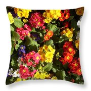 Colourful Spring Flowers Throw Pillow