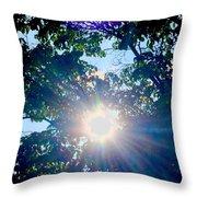 Colourful  Sunburst Throw Pillow