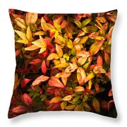 Colours Of Autumn  Throw Pillow