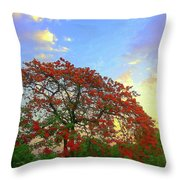Colours Of Nature Throw Pillow