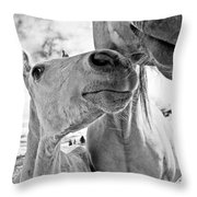 Colt 003 Throw Pillow