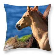 Colt By The Sea Throw Pillow