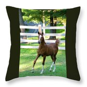 Colt Throw Pillow