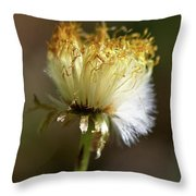 Coltsfoot Bad Hair Day 1 Throw Pillow