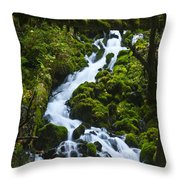 Columbia Gorge 1 Throw Pillow