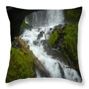 Columbia Gorge 4 Throw Pillow