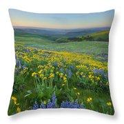 Columbia Hills Wildflower Dawn Throw Pillow