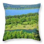Columbia River Gorge View Throw Pillow