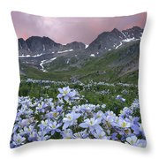 Columbine At America Basin Throw Pillow