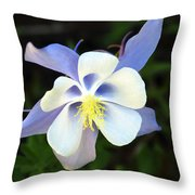Columbine Colorado State Flower Throw Pillow