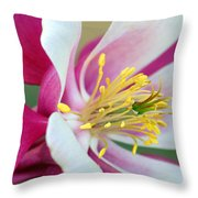 Columbine Flower 2 Throw Pillow