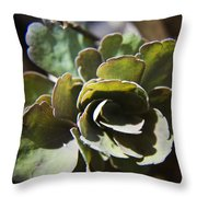 Columbine Foliage Throw Pillow