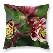 Columbine In Spring Throw Pillow