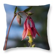 Columbine Sentinals Throw Pillow