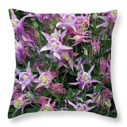 Columbine Splendor Throw Pillow