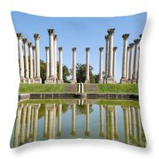 Column Reflection Throw Pillow