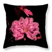 Columnar Ornamental Peach 001 Throw Pillow