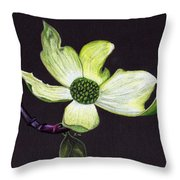 Come Hither Look Throw Pillow