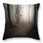 Come Into The Light Throw Pillow