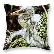 Come On Feathers Throw Pillow