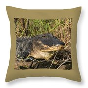 Come On Over Throw Pillow
