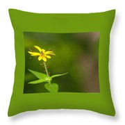 Come One, Come All Throw Pillow