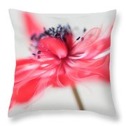 Comes With A Bow. Throw Pillow