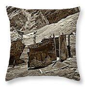 Comfort Station Sepia Throw Pillow