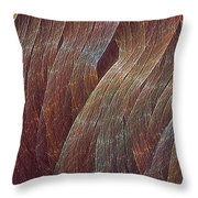 Comfortably Conflicted Throw Pillow