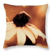 Comfortably Perched - Gold Glow Throw Pillow