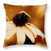 Comfortably Perched Throw Pillow