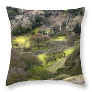 Coming Down The Hill Throw Pillow