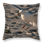 Coming In For A Landing - Jersey Shore Throw Pillow