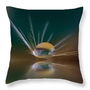 Coming In For Landing Throw Pillow