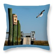 Coming In For The Landing Throw Pillow