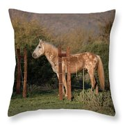Coming Through The Fence Throw Pillow