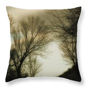 Coming Up The Drive 2 Throw Pillow