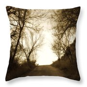 Coming Up The Drive 3 Throw Pillow