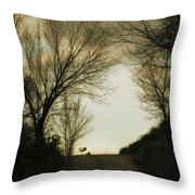 Coming Up The Drive Throw Pillow