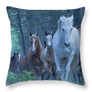 Coming Up The Hill Throw Pillow