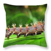Comma Caterpillar Throw Pillow