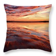Command Of Beauty Throw Pillow